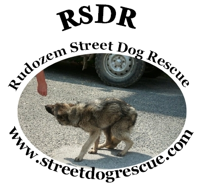 Rudozem Street Dog Rescue - Welcome